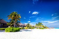 Beach with coconut palms and villas on a small island resort in Maldives